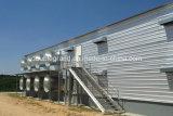 Las aves de corral de la estructura de acero contienen con los paneles de la azotea y de pared