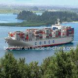 Taxas de frete do mar da companhia do transporte que enviam de China a Le Havre, France