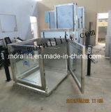 مصنع أعجز [ديركت سل] كرسيّ ذو عجلات مصعد