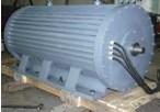 Langsamer Generator-Wind-Turbine-Generator-Wind-Energien-Generator-Dauermagnetgenerator-Windmühlen-Generator