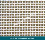 Polyester Plain tecidos de malha de tecido