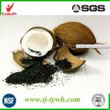 Valeur élevée en iode Carbone activé en coquille de coco