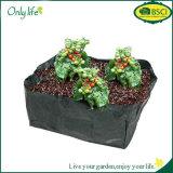 Onlylife PET mehrfachverwendbare Gemüsekartoffel wachsen die Beutel, die Beutel-Garten-Potenziometer-Pflanzer pflanzen