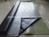 Membrane imperméable à l'eau de Steets de toit