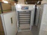 Oeuf industriel approuvé de Digitals de la CE hachant des incubateurs pour 1056 oeufs (KP-10)