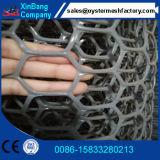 الصين ممون شبكة بلاستيكيّة مسطّحة