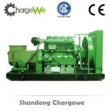 침묵하는 고명한 상표를 가진 저가 20-100kw Biogas 발전기 세트