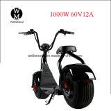 vespa de motor gorda de Seev Woqu Harley Citycoco del neumático de la rueda de 60V 1000W eléctrica