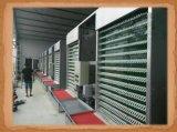 тип автоматическая клетка цыпленка батареи для бройлера слоя