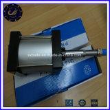Cylindre pneumatique d'air de double de Rod de série de Dng corps à longue course d'acier inoxydable