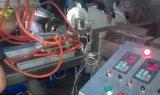 Machines de expulsion de plastique pour produire la bande de joint de porte de guichet