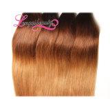 Véritable cheveu de Malaysian d'Ombre de longueur de la vente chaude la plus de haute qualité