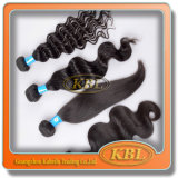 Remy brasilianische Haar-freies Beispielhaar-Bündel 100%