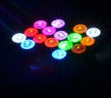 다색 밝은 유행 형식 자석 LED 귀걸이
