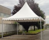 3X3 Marquee Tent con Wide Applications