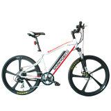 Gebirgselektrisches Fahrrad mit Mg-integriertem Rad