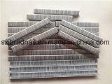 Agrafes industrielles de prix usine pour la fabrication moderne de meubles