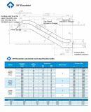 China-Bestes kauft energiesparende Fjzy kundenspezifische Rolltreppe