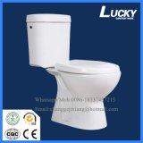 2016 het Moderne Populaire Tweedelige Toilet van WC