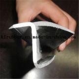 Qualitäts-Behälter-Gummiprofildichtungen