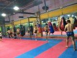 Aptitud Equipmet Comercial Profesional bolso colgante del boxeo