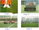 実質の草(JDS-50)総合的な泥炭か人工的な草