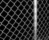 Frontière de sécurité galvanisée par qualité de maillon de chaîne avec le prix bas