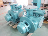 2W. W-Serien-Zwilling-Schrauben-Pumpe