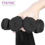 Commercio all'ingrosso brasiliano dei capelli del Virgin naturale della categoria normale 8A di Yvonne