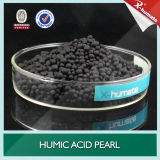 Acid Humic Powder e Pearl