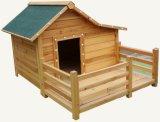 Het Huis van de hond (pcdh-6076)