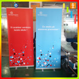 La stampa materiale Digital della flessione del PVC rotola in su la bandiera