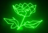 5W de groene Laser van de Animatie voor Disco (hl-088)