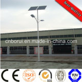 100W LED 2PCS*150wp 단청 PV 모듈 위원회를 가진 태양 가로등