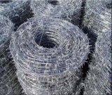 Filo del filo galvanizzato torsione /Gi del doppio filo del fornitore della Cina