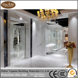 家の装飾のための熱い世界の普及した高品質の陶磁器の薄い平板
