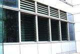 商業Bulidingのための普及した様式のルーバー付きのガラス窓