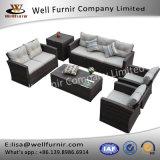 Furnir buono WF-17056 gruppo della disposizione dei posti a sedere del sofà delle 6 parti con l'ammortizzatore