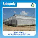 Venta caliente del invernadero agrícola película plástica