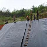 HDPE Geomembrane per la costruzione del lago