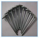 Clavos galvanizados alta calidad de China