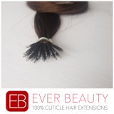 Estensioni brasiliane dei capelli umani di 100% con l'anello Nano