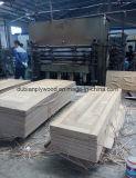 Peau de porte moulée HDF avec placage en bois