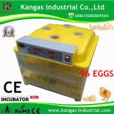 Plein incubateur automatique transparent d'oeuf de caille d'oeufs