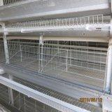 gaiola automática cheia da camada do projeto 9LCD-4128 o mais novo