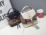 Ocio Mini portátiles de cuero de las mujeres mochilas