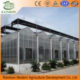 Invernaderos de jardín de policarbonato de aluminio con sistema de apoyo