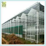직류 전기를 통한 강철 구조물 커버 유리 녹색 집