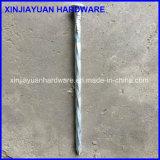 3/8 '' vente en gros de clou de transitoire galvanisée par électro lisse de partie lisse