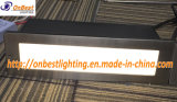 Indicatore luminoso esterno della parete di 5W LED con il coperchio 304ssl in IP65